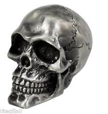 tete de mort crane garde boue moto skull bobber chopper ornament silver fender
