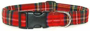 Royal Stewart Scottish Tartan Dog Collar