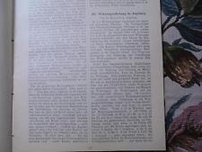 1903...Wohnungswesen 9 / Wohnungsbau Erhebung in Augsburg