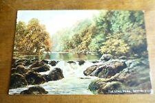 G221 BETTWS-Y-COED The Still Pool Postcard c1908