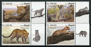 Angola Wild Animals Stamps 2019 MNH Leopards Big Cats Fauna 4v Set