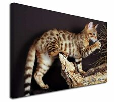 More details for bengal kitten 'love you mum' x-large 30
