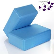 Blue Yoga Blocks by Purple Leaf Yoga