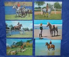 Horse & Rider Postcard Collection job lot bundle of 6 1970s & 1980s