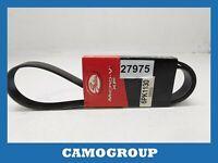 Belt Service V-Ribbed Belt Gates VOLKSWAGEN Golf 7 Passat Audi A4 A5 A6 Q5 Q7