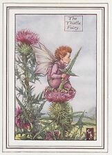 CICELY MARY BARKER c1930 THE THISTLE FAIRY Painting Vintage Art Book Print