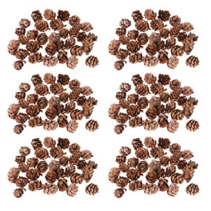 180 Small Natural Dried Pine Cones In Bulk Dried Flowers for