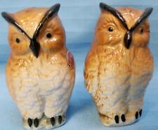Wise Owl Salt & Pepper Shakers Whimsical Birds Bone China Brown Black