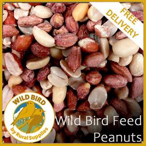 Peanuts Wild Bird 25KG | Premium | Safe | Quality Fresh Feed | Garden Birds |