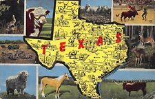 VTG POSTCARD LONGHORN WHITE HEREFORD COYOTE RATTLESNAKE TEXAS STATE MAP TX / A85