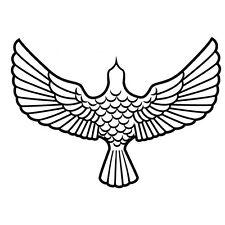 EAGLE BIRD OF PREY FLYING CAR DECAL STICKER