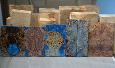 10 x scales poplar + elm stabilized wood burl 125-155 x 41-55 x 6-9 mm.