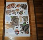 Vintage Smokey Bear Animal Tracks Poster Leave a good impression in the forest