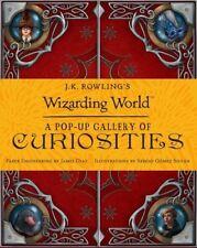 J.K. Rowling's Wizarding World: A Pop Up Gallery of Curiosities (Harry