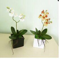 Artificial flowers & plants Phaleanopsis Orchid arrangement in pot F72A