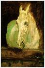 Henri de Toulouse Lautrec Fine Art Poster Print Le Cheval Blanc Gazelle