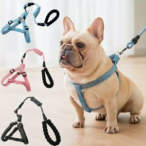 Small Pet Dog Harness Leash Set Adjustable Buckle Puppy Cat Chest Strap Leash