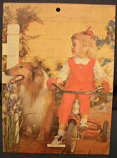 Vintage Collie Dog and Girl on Bike Frame Tray Puzzle