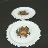 Vintage American Airlines Luncheon Plates Fruit Lot of  2 #73-PL-083  Preowned