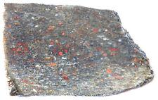 Gem Dinosaur Bone Fossil - Dino - Fossilized - Slab - Utah - Red -  90 grams