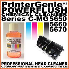 Printhead Kit di pulizia per Canon mg5650 5660 5670 PRINTER-Ugello FLUSH & Clean