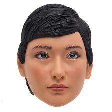 1/6 PHICEN LULI HEAD - CHINESE MILITIA HONOR GUARD - NEW