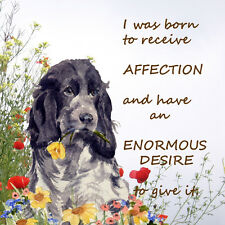 COCKER SPANIEL BLUE ROAN DOG NEW HARDBOARD PLAQUE TILE WATERCOLOUR PRINT VERSE