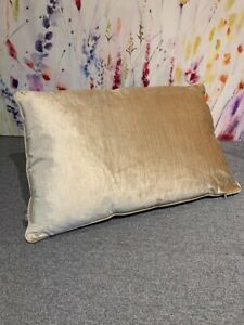 ILiv Velvet Champagne Large Cushion 55 X 37cm