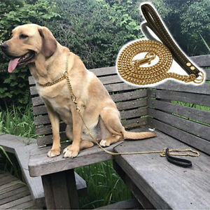 Pet Dog Leash Stainless Steel Gold Color Chain Black Leather Handle 42in+9in