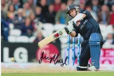 Inglaterra mano firmado James Foster 6x4 Foto Cricket 3.