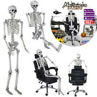5.4FT Full Body Skeleton Props Movable Joints Haunted House Halloween Decoration
