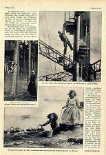 """Der kletternde (und tauchende) Jagdhund """"Jagdkönig Graf Roland"""" 1907"""