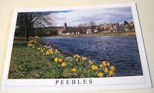 Scotland Peebles Springtime River Tweed LB-77-1755 Stirling Gallery - posted