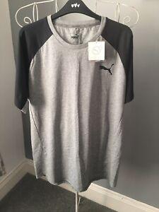 Puma Evostripe T Shirt
