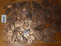 Elongated Pressed Penny Lot of 100+ from California Many Retired