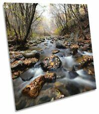 Canvas Brown Landscape Art Prints