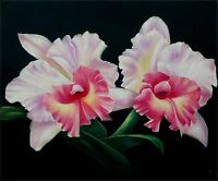 Quality Hand Painted Oil Painting Three-Tone Orchids 20x24in
