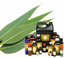 3 oz EUCALYPTUS RADIATA ESSENTIAL OIL THERAPEUTIC GRADE