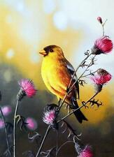 "Jim Hansel ""American Goldfinch"" Print  12"" x 16"""