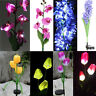 New Solar Power Flower Garden Stake Lamp Outdoor Patio Yard LED Landscape