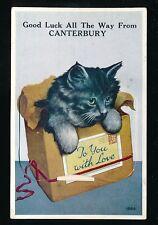 Kent CANTERBURY Good Luck Cats Novelty Pocket c1920s? PPC