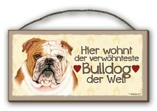 BULLDOGGE BULLDOG - HOLZSCHILD + KAFFEEBECHER IM SET HUND  10