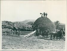 Men Horses Processing Hay Historical Salt Lake City Original News Service Photo