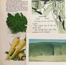 30 Piece Lot Green Junk Journal Altered Art Collage Paper Craft Ephemera