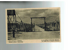 Mint 1940s Auschwitz Concentration Camp real picture Postcard Birkenau Path Gate