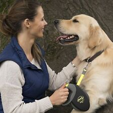 FlexiGiant Retractable Tape Leash Medium Neon Sturdy Belt 25kg Dog Pup Lead 8m