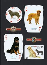 Hovawart Mounted Collection Of Vintage Dog Playing Cards And Bands Great Gift