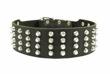 """Dean & Tyler 2 1/4"""" Wide Studded Leather Dog Collar (36""""-40"""" neck size)"""