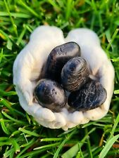 Protective Mother Earth Healing Hands with 4 Black Tourmaline Stones 10-25mm:...