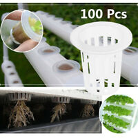 100X Vegetable Net Cups Slotted Mesh Soilless Culture Vegetable Pots Hydroponics
